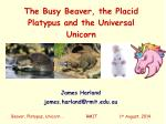The Busy Beaver, the Placid Platypus and the Universal Unicorn