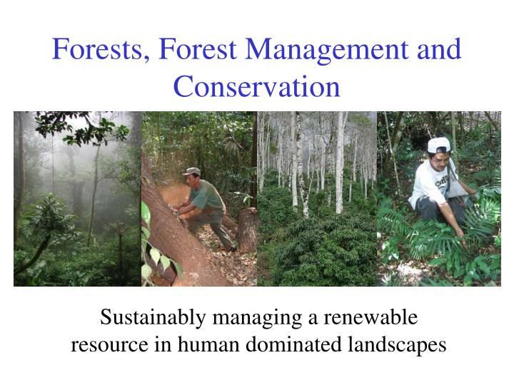 sustainably managing a renewable resource in human dominated landscapes n.