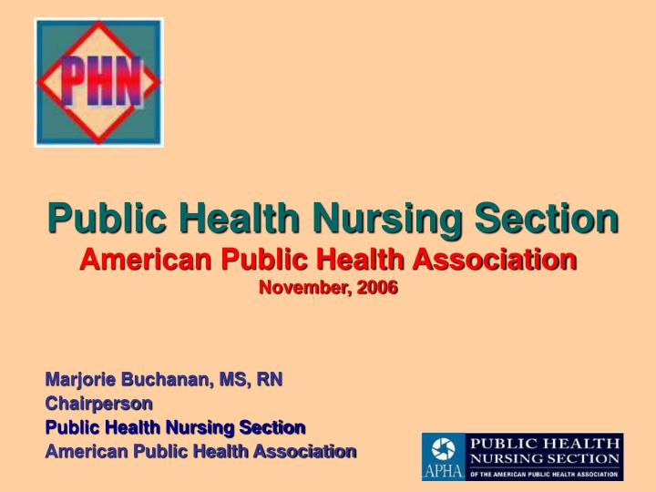 public health nursing section american public health association november 2006 n.